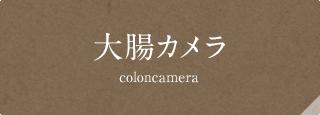 大腸カメラ